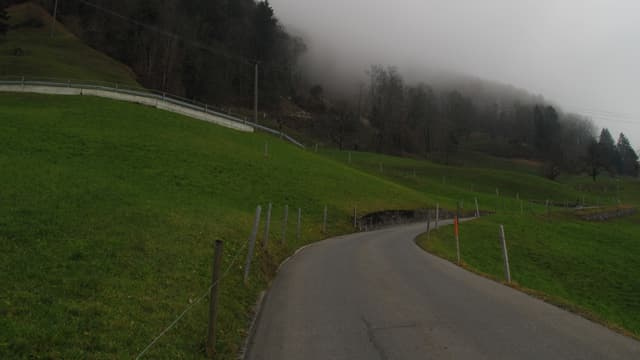 Die Wiesenbergstrasse ist sanierungsbedürftig.