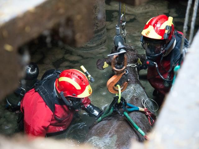 Feuerwehrmänner bei der Arbeit.