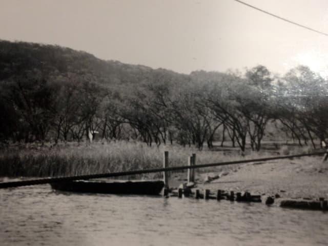 Aufnahme eines südafrikanischen Flusses.
