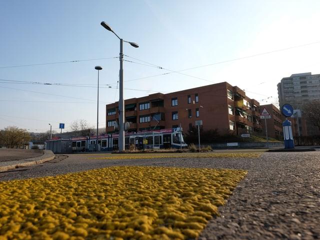 Tramendstation mit blau-weissem Tram im Morgenlicht, im Vordergrund ein gelber Fussgängerstreifen.