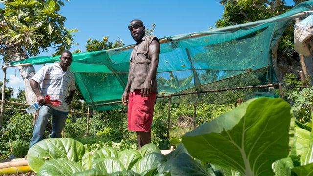 Tavia Rondeh (rechts) und John Iabud (links) im neuen Gemüsegarten von Rondeh