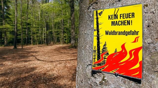 Ein Warnschild im Wald.