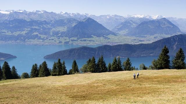 Güllende Bergbauern an der Rigi, im Hintergrund der Bürgenstock.