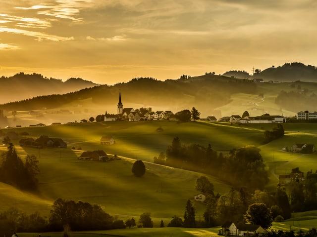 Landschaft mit Hügeln im Abendlicht in Gold
