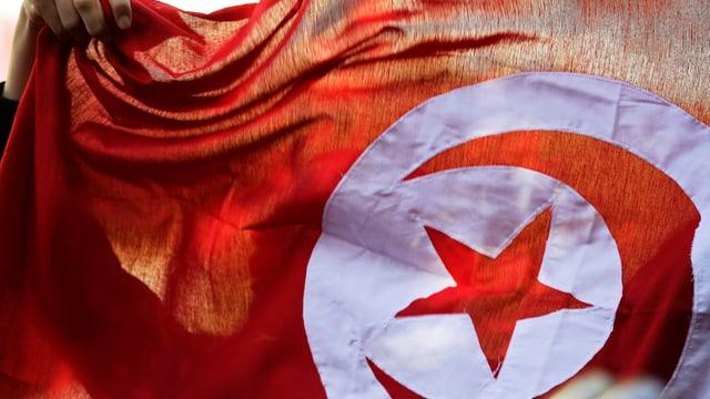 Tunesisch Flagge