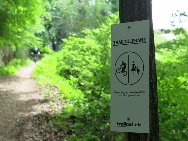 """Schild an einem Baum mit der Aufschrift """"Trailtoleranz"""" und Pictogramm von Biker und Fussgängerin mit Kind."""