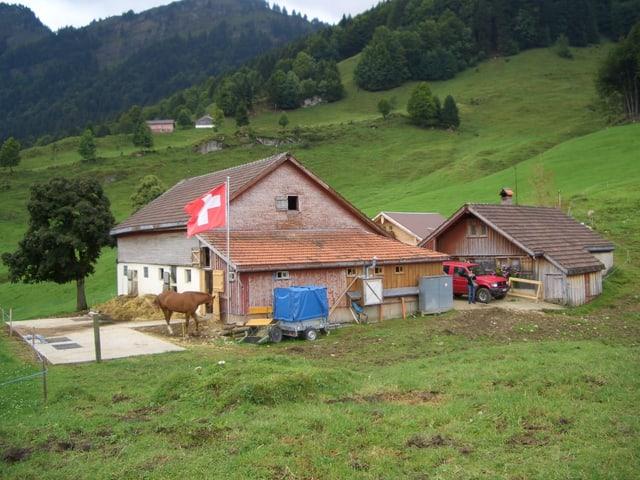 Die Alp Fischegg auf 937 Metern über Meer.