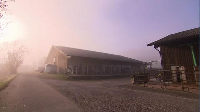 Video «Kinder-Spezial – Tag 2 – Susann's Beizli, Oberembrach» abspielen
