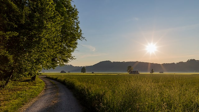 Sonnenaufgang mit etwas Bodennebel im Gürbenthal.