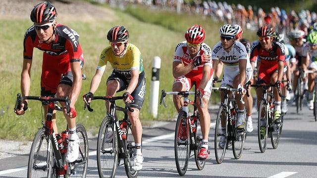 Radrennfahrer an der Tour de Suisse 2013