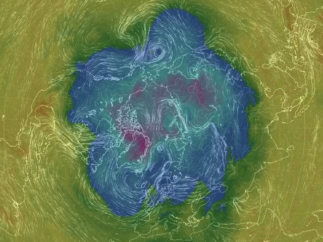 Eine Karte der Erde mit Blick auf den Nordpol zeigt blaue Flächen mit einer Ausbuchtung über dem Pazifik