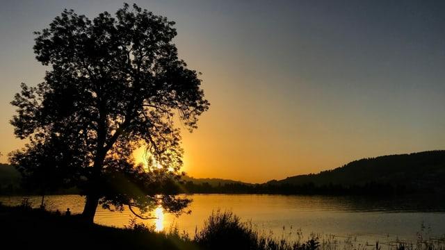 Sonnenuntergang am Ägerisee am 26. Juni 2019 und 20.50 Uhr.