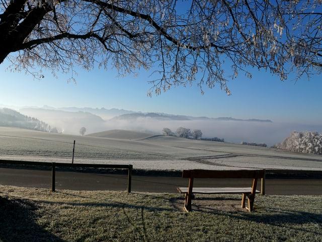 Während es unten dichten Nebel hat, bietet sich etwas erhöht eine wunderbare Aussicht.