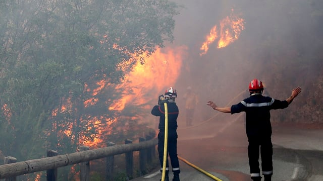 Purtret dals incendis dasper ina via en Frantscha dal sid.