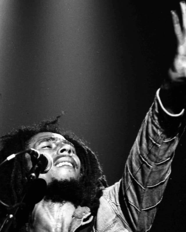in musicist da reggae