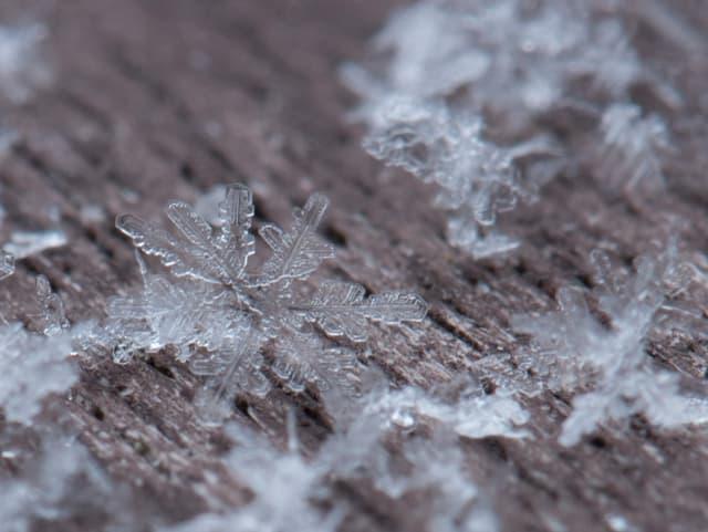 Grossaufnahme von Schneeflocken.