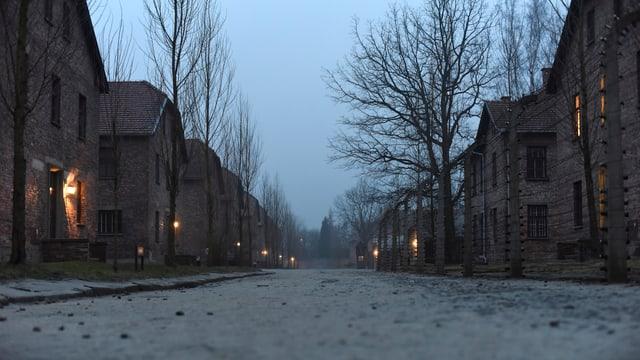 Eine leere Strasse in der winterlichen Dämmerung, gesäumt von Stacheldrahtzäunen.