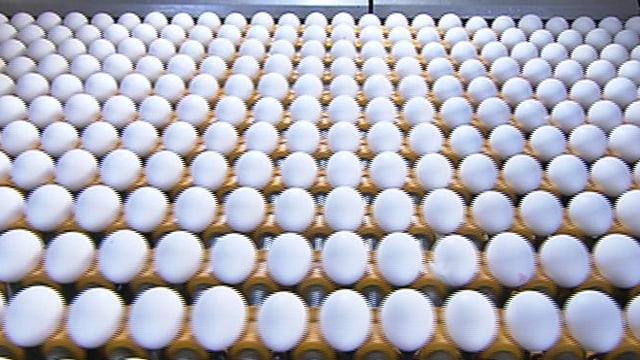 Video «Kassensturz vom 25.01.2011» abspielen