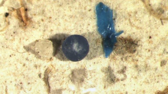 Mikroplastik auf sandigem Flussgrund.