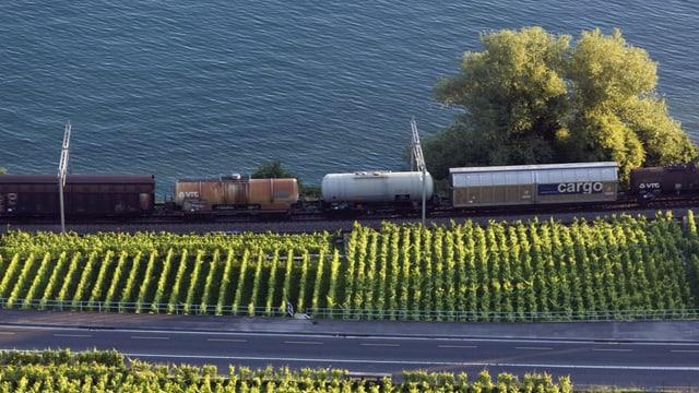 Güterzug fährt am Genferseeufer entlang
