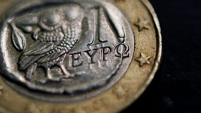 Munaida grecca.