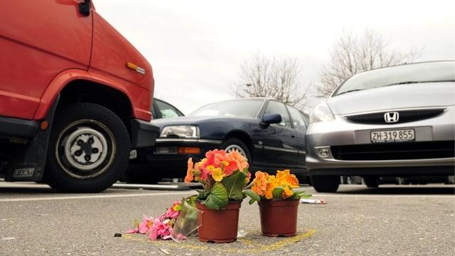 Ein Strauss und Blumentöpfe mit bunten Priemeln auf dem Parkfeld.