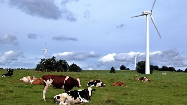 Die Branche ist überzeugt, dass viel mehr Potential in der Wind-Energie steckt, als der Bundesrat vorrechnet.
