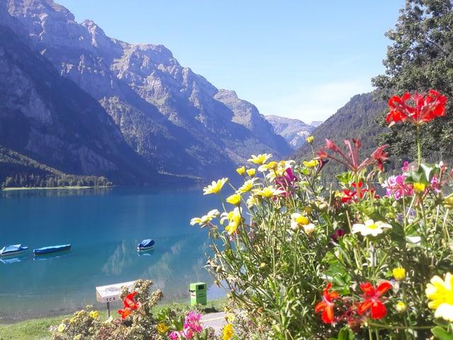 Blumenbeet im Vordergrund, dahinter der ruhige See, am Himmel keine Wolken.