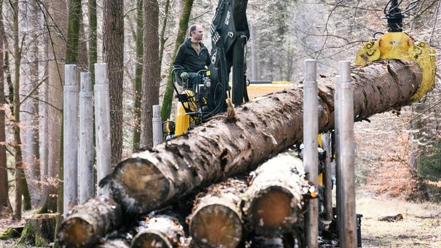 Mann stapelt Holz