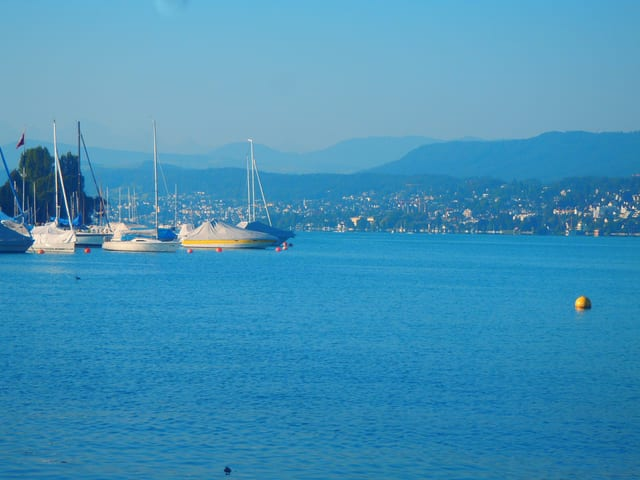 Am Ufer des See liegen grössere Segelschiffe und Moterboote vor Anker, im Hintergrund die Stadt, darüber klarerer hellblauer Himmel.