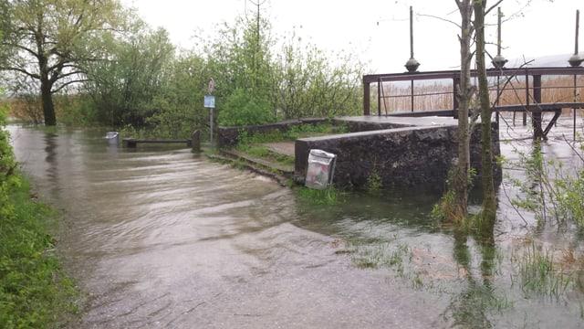Überflutetes Greifenseeufer