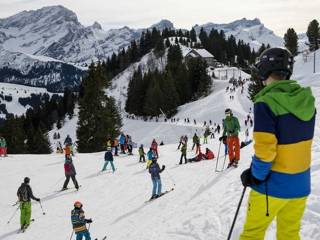 Viele Skifahrer auf einer Piste.