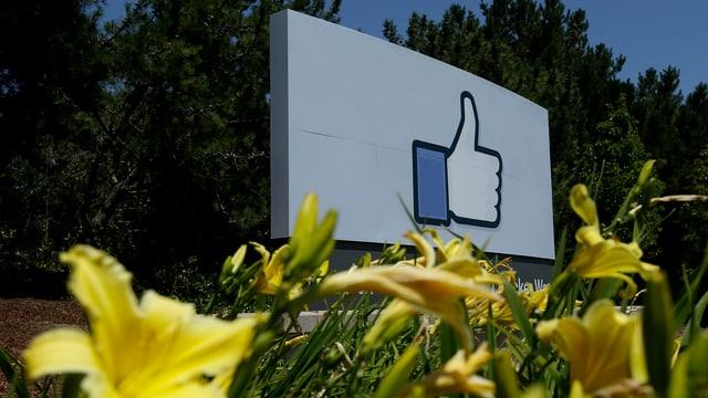 Das logo von Facebook auf einer Tafel im Freien.