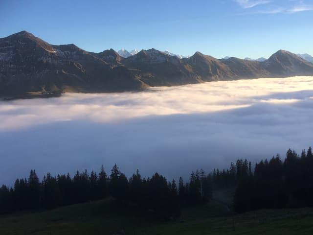Nebelmeer vor einer Bergkette unter blauem Himmel.