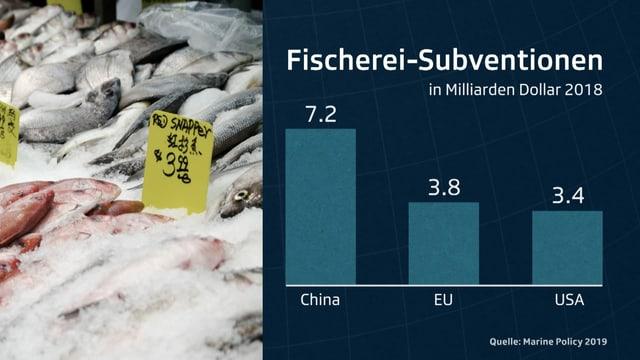 China, die EU und die USA subventionieren die Fischerei am stärksten. Weltweit fliessen rund 35 Milliarden Dollar Subventionen in die Fischerei.