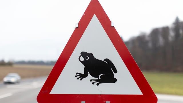 Warnschild Dreieck mit Frosch auf weissem Schild und rotem Rand.