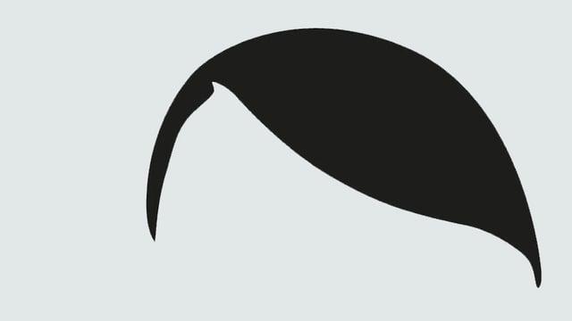 Hitlers gescheitelte Frisur ist in schwarzer Farbe und stark stilisiert auf weissem Grund zu erkennen.