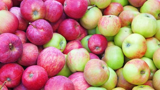 Viele Äpfel auf einem Haufen.