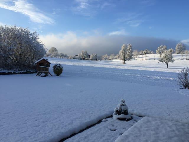 Im Garten liegen geschätzte 8 Zentimeter Neuschnee.