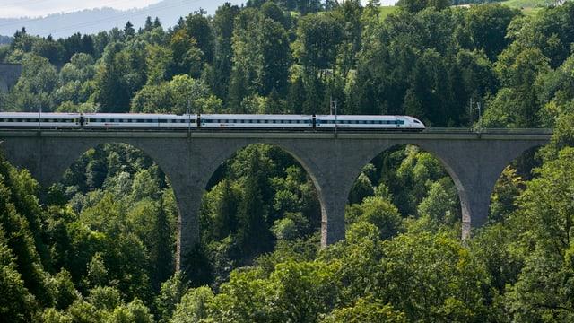 Zug fährt über Viadukt, runderhum stehen Bäume.