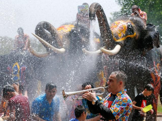 Trompeter am Songkran-Fest. Dahinter wasserspritzende Elefanten