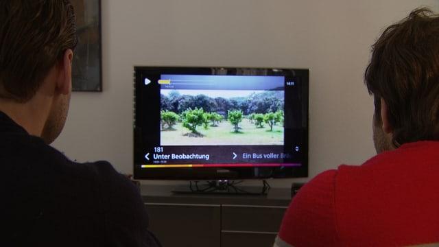 Männer vor dem Fernseher