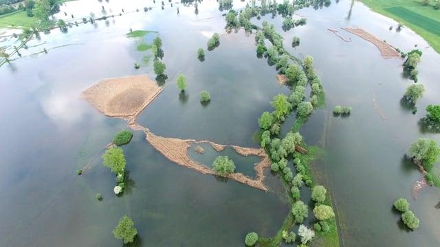 Aufnahme von überschwemmten Feldern bei Maschwanden von einer Drohne aus gesehen.