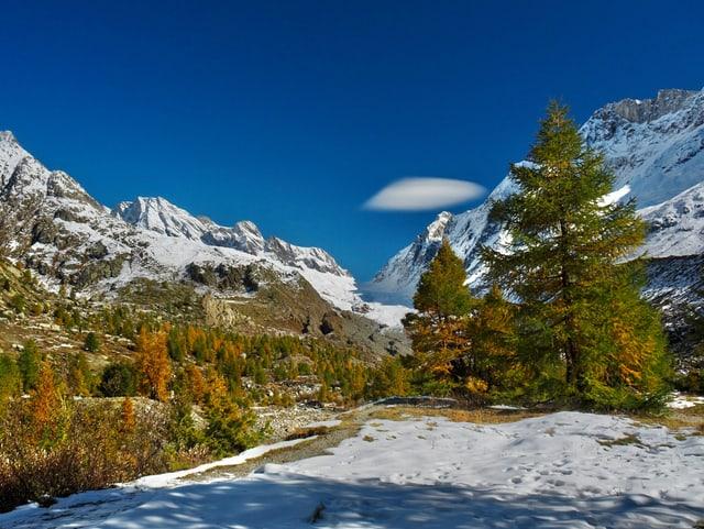 Schnee, herbstlich verfärbte Bäume, blauer Himmel und eine Föhnwolke.
