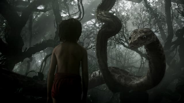 Mogli steht der Schlange Kaa gegenüber.