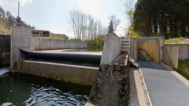 Kleinwasserkraftwerk Murkart bei Frauenfeld