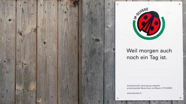 IP Suisse-Siegel an einer grossen Holztüre