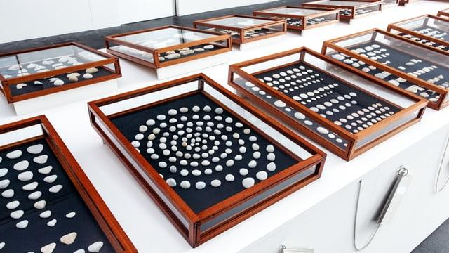 Zwei Reihen von Schaukästen, in denen Kieselsteine präsentiert werden: mal in Reihen, mal als Spirale.