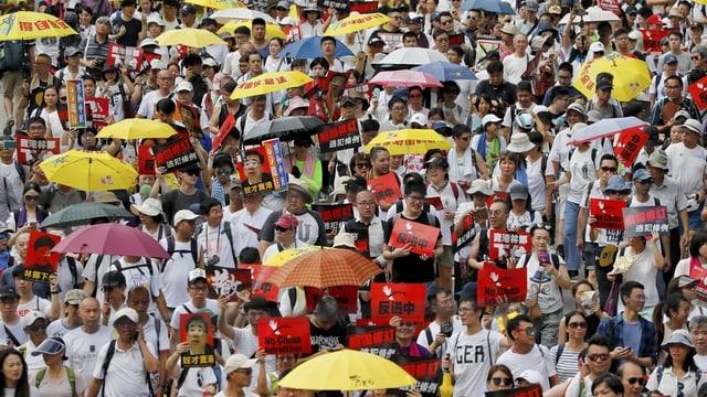 Hunderttausende protestieren