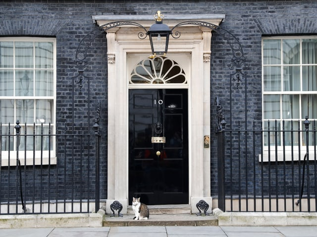 Eingang zur 10, Downing Street ,mit einer Katze auf der Schwelle.
